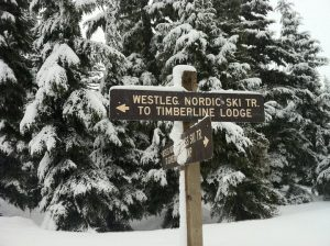 TimberlineSign